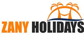 zany holidays