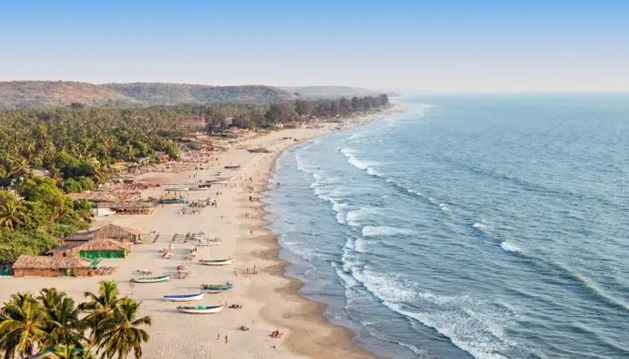Find the perfect Options for Heading to Goa and More