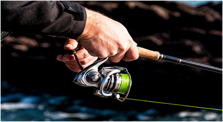 A Guide on Bass Spinning Reels
